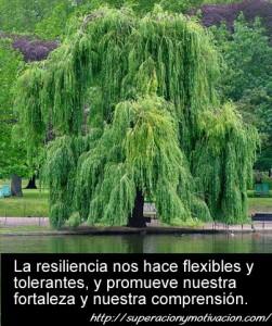 mensaje-resiliencia
