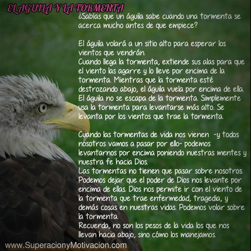 Reflexiones De Superación El Aguila Y La Tormenta