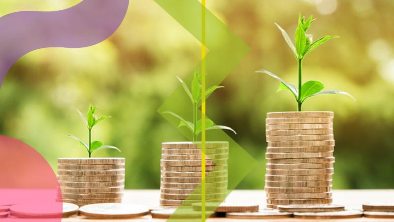 cómo crear un portal de dinero poderoso