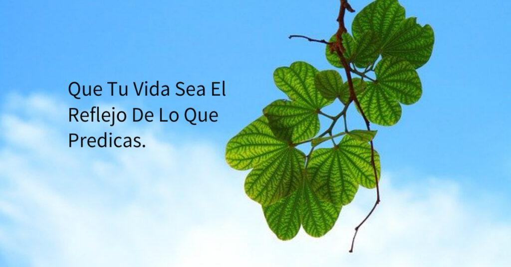 Que Tu Vida Sea El Reflejo De Lo Que Predicas.